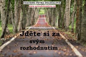 životní cesta